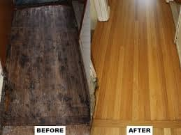Hardwood Refinishing 2